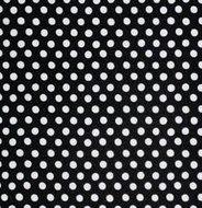 GP070 Spot Noir SenI