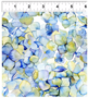 The-Leah-Collection-Large-Hydrangea