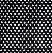 GP070-Spot-Noir-SenI
