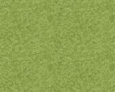 276-G3-New-Grass